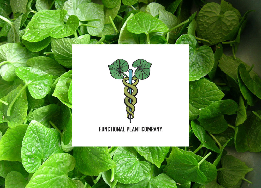 The Functional Plant Company